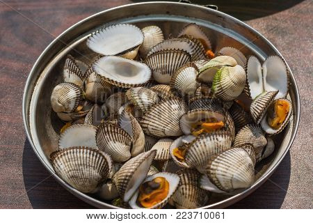 Sea shellfish cooked at a campfire on the beach.