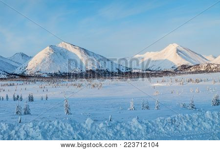 beautiful scenic landscape with snow covered mountains and fir trees, kolyma highway, russian federation
