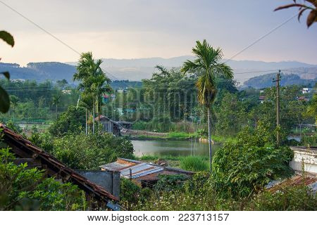 beautiful green tropical plants and rooftops with mountains behind, vietnam, dalat region poster