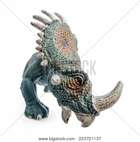 Styracosaurus dinosaurs toy isolated on white background with clipping path. Dinosaur from the Cretaceous Period.