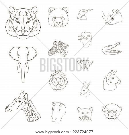 Wild animal outline icons in set collection for design. Mammal and bird vector symbol stock  illustration.