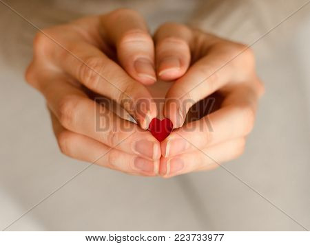 A small heart in hands of a young girl. Concept of donation