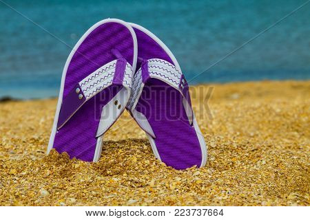 Pair Of Flip Flops Sticking Up On A Sandy Sea Beach