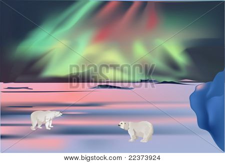 illustration with polar bears under aurora