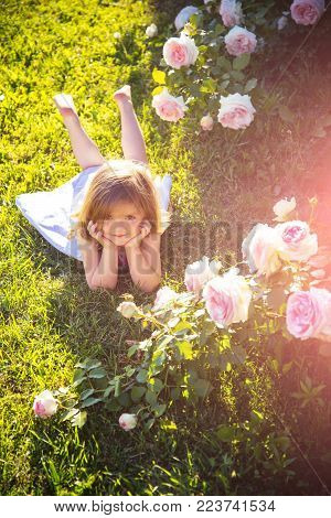 Girl Lying On Green Grass In Summer Garden. Child With Cute Smile At Blossoming Rose Flowers. Happy