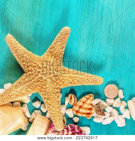 An overhead photo of a sea star, sea shells, and pebbles on a vibrant turquoise background, a square design template for a summer vacation banner