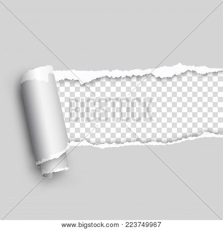 Vector ripped paper, layered - stock vector