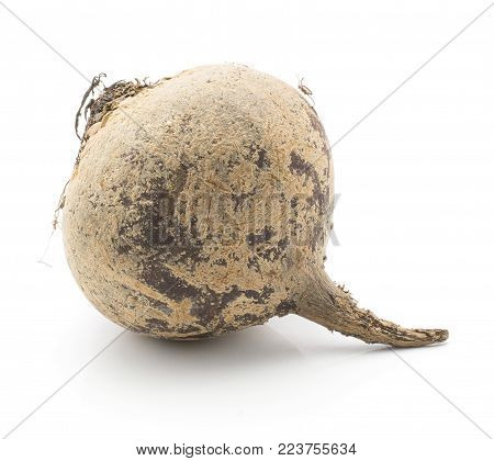 Beetroot (raw red beet) isolated on white background one bulb