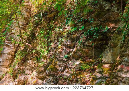 A rocky wall of a mountain with vegetation and glares of sunlight in sunny autumn day