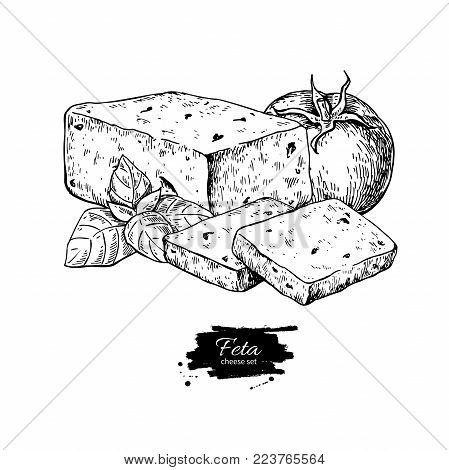 Greek feta cheese block drawing. Vector hand drawn food sketch with  basil, tomato. Greek salad ingredient. Farm market product for label, poster, icon.