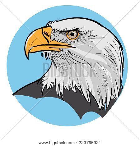 Eagle Head. Portrait of a proud eagle on a blue background. Illustration