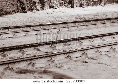 Railway lines in the snowy night with special lights and lambency.