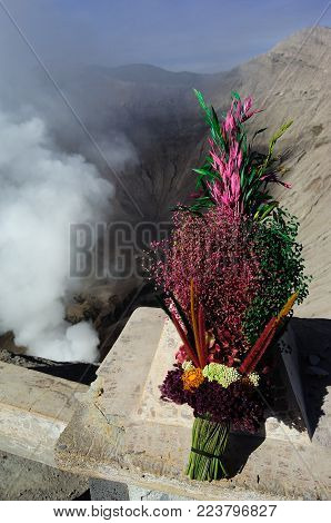 Flower for Bromo. Flower for show respect for God.