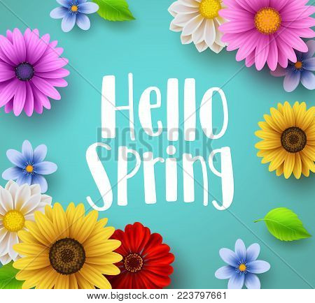 Hello spring text vector banner greetings design with colorful flower elements like daisy and sunflower in green floral background for spring season. Vector illustration.