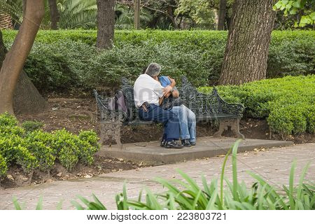 Forest of Chapultepec, Mexico City - October 29, 2009. An anonymous couple of adults show affection by kissing while sitting on a bench in a public park in Mexico City.