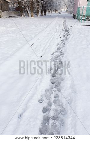path in the snow on the nature .