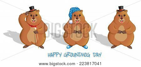 Groundhog Day. A set of three rodents. In a cylinder, in slippers and a nightcap, with a cane, with a bow tie. Long shadow. Meteorological sign. Isolated on white background. Vector illustration.