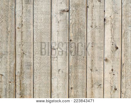 Natural wood panel timber wall background. Country style timber wall, unvarnished natural texture exterior. Great farmhouse feel, captured outdoors in natural sunshine. Eight panels showing.