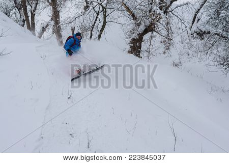 Snowboarder rides into a cloud of snow powder along the forest slope, among snow-capped trees. Adventure in wilderness.
