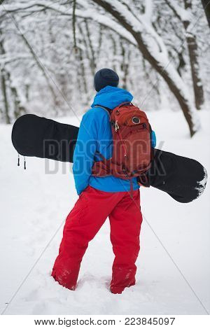 Snowboarder with backpack stands in the forest after snowfall, admiring snow covered trees on the slope - anticipation of adventure. Back view.