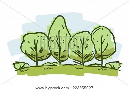 Vector illustration: Hand drawn sketch with color trees. Cartoon natural landscape on white bacground.