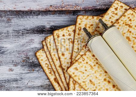 Pesah celebration concept jewish Passover holiday and Torah scroll during