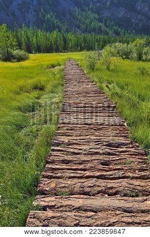 Summer mountain landscape with  wooden walkway through the mountainous swampy valley, Altai, Russia