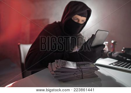 Portrait of calm hacker looking at mobile while situating at desk in apartment. Cash situating on it. Steal concept
