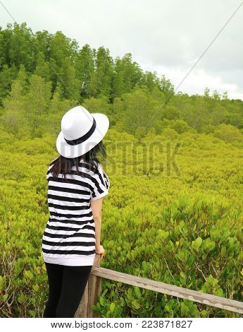 Vertical Photo of a Woman Admiring the View of Vibrant Green Golden Mangrove Field, Rayong Province, Thailand