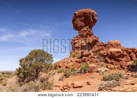 The eroded sandstone formation known as Balanced Rock, Arches National Park, Utah, USA, beautifully balanced by the nearby bush, on a bright spring day.