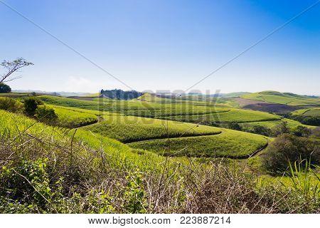 Valley of a Thousand hills landscape. Green hills panorama. South African landmark near Durban.