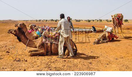 Jaisalmer, India - Mar 4, 2012. Camel Riding On Desert In Jaisalmer, India. Jaisalmer, The Golden Ci