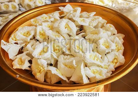 Close Up Of White And Yellow Sandalwood Flowers Or Artificial Flowers On The Golden Tray With Pedest