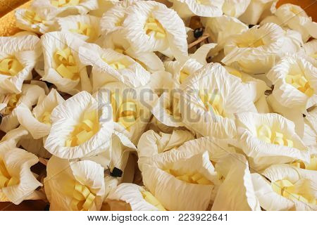 Close Up White And Yellow Sandalwood Flowers Or Artificial Flowers On The Golden Tray With Pedestal