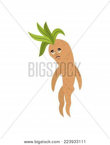 Mandrake Root Sad. Sorrowful Legendary Mystical Plant In Form Of Man.