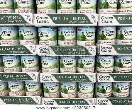Spencer, Wisconsin,January,28,2018   Green Giant is an American company owned by B&G foods and was introduced in 1903