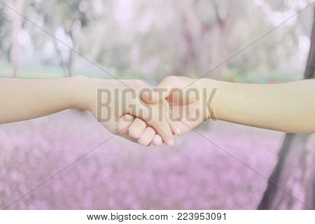 Couples holding hands in heart shape at  pink flower park with the morning sweet  light.Hand in hand together,selective focus ,This photo contain soft focus and burry