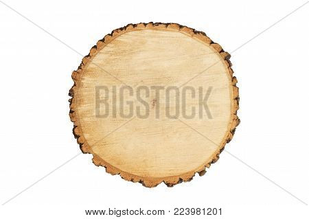 wooden round chopping board isolated on white background. Wooden stump isolated.