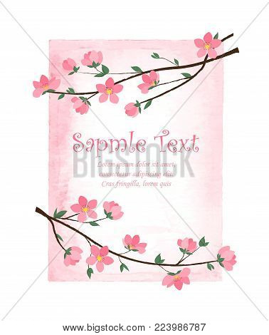 Vector decoration branches with flowers, spring blossom Sakura with watercolor frame