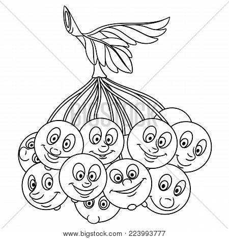 Coloring page. Cartoon Rowanberry. Happy Fruit character. Eco Food symbol. Design element for kids coloring book, t-shirt print, icon, logo, label, patch, sticker.