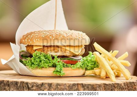 Appetizing burger with a few fries. Burger with fries on a stump.