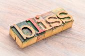 bliss word abstract in letterpress wood type blocks stained by color inks poster
