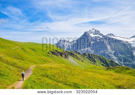 Hiker In The Swiss Alps Walking With Hiking Poles. Famous Mountains Jungfrau, Eiger, And Monch In Th