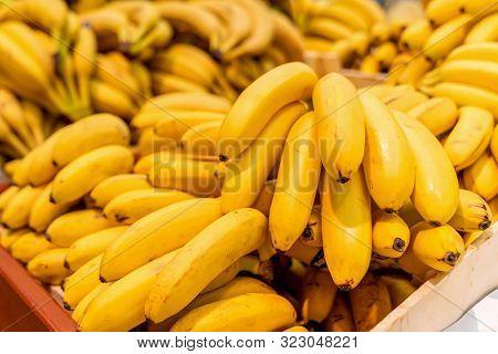 Macro Photo Food Tropical Fruit Bananas. Texture Background Yellow Bananas In The Peel. Product Imag