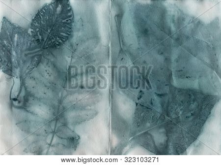 Blue Leaves Eco-print Vintage Paper, Natural Hand Print By Plants On Paper, Handmade Background