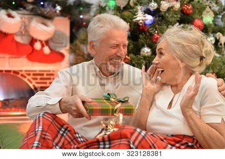 Senior Couple Celebrating Christmas, Sitting With Present