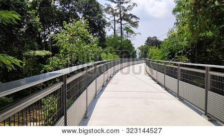 Fort Siloso Skywalk - 181 Meters Long Skywalk Trail Provides Guests A Scenic Trek Among The Treetops