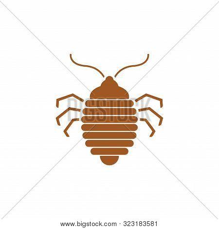 Bed Bug Icon. Bedbug Sign. Chinch Vector Illustration