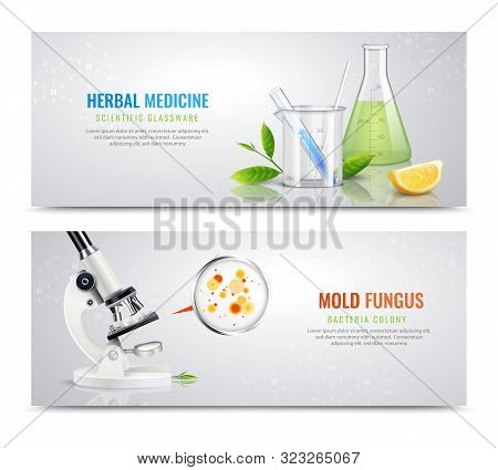 Mold Fungus Bacteria Horizontal Banners With Realistic Images Of Herbs Microscope And Colony Spots W