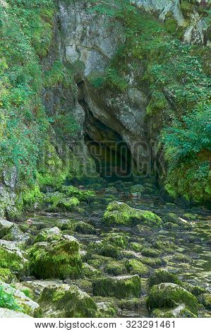 Source Du Doubs Mouthe Franche Comté France With Green Plants On A Sunny Day